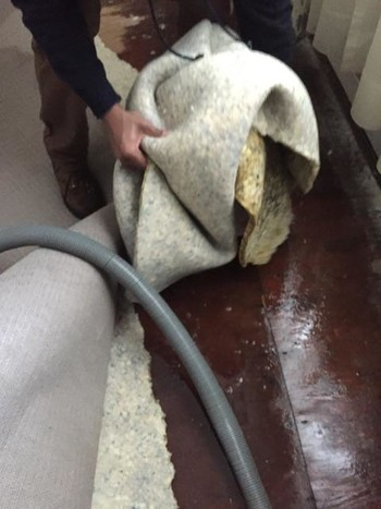 Water Damage Restoration in Lexington, MA by Colonial Carpet Cleaning