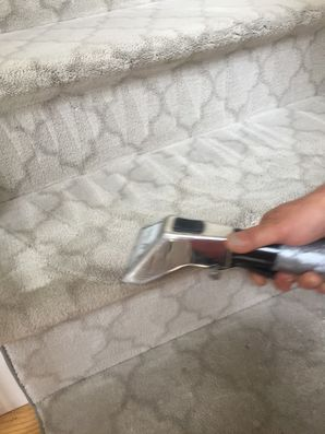 Carpet Cleaning in Reading, MA (2)
